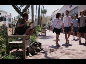 Collaborating to Combat Homelessness in Santa Barbara County